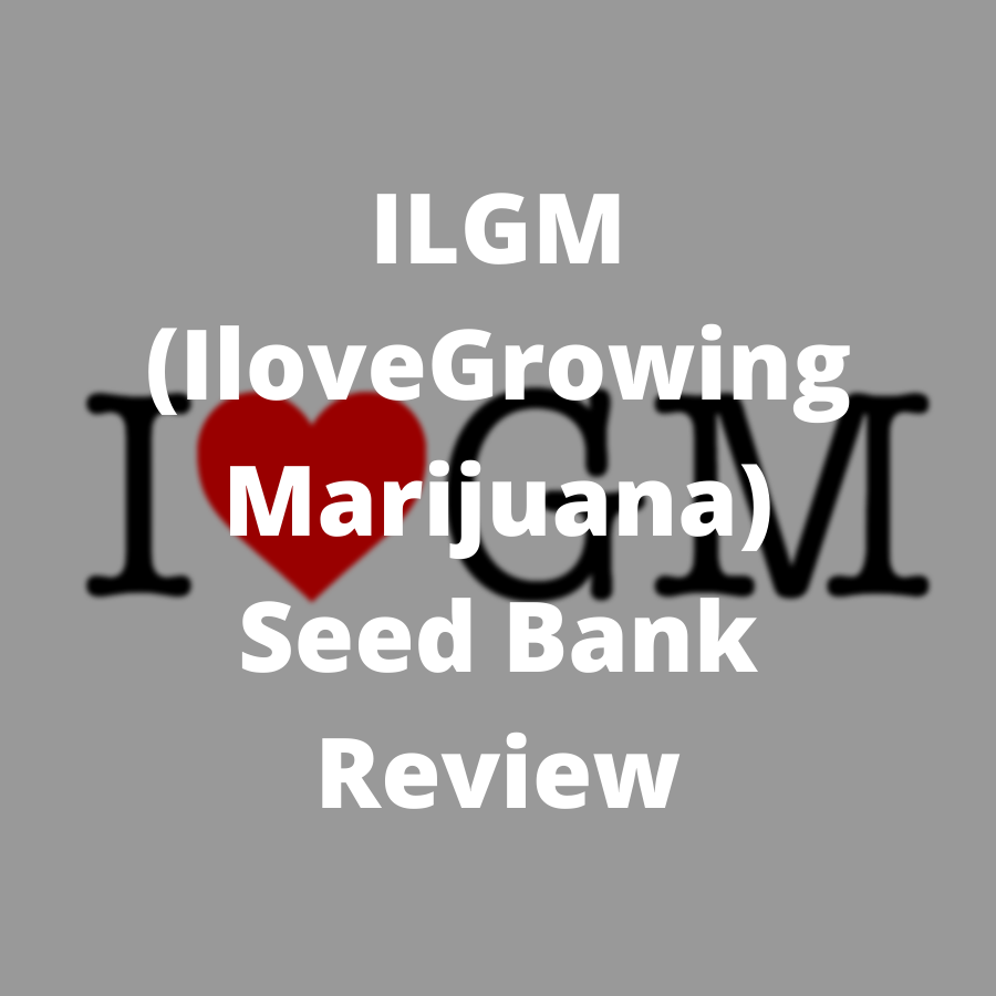 ilgm seeds review