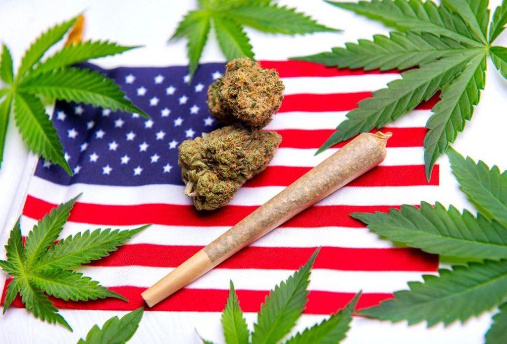 is it illegal to buy marijuana seeds