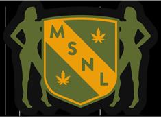 Does MSNL take Zelle?