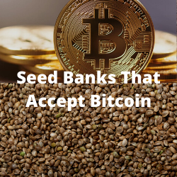 Seed Banks That Accept Bitcoin