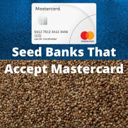 Seed Banks That Accept Mastercard